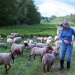 5. Klasse Realschule Mellrichstadt im Mai 2013 auf einer Schafweide des Mellerschten Schafhofes