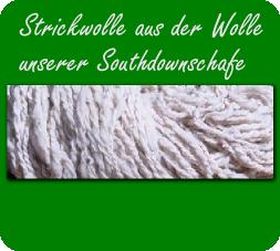 Strickwolle aus der Wolle unserer Southdownschafe